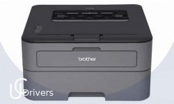 Brother HL-L2370DW Drivers Printer Download