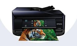 Download Epson XP-800 Driver Printer Software