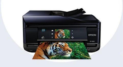 Download Epson XP-800 Driver Printer Software