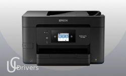 Epson WorkForce Pro EC-4020 Driver Download