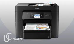 Epson WorkForce Pro EC-4030 Driver Printer Download