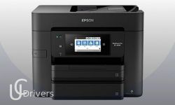 Epson WorkForce Pro EC-4040 Driver Download