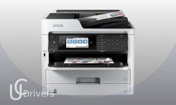Epson WorkForce Pro WF-C5710 Driver and Software