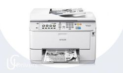 Epson WorkForce Pro WF-M5694 Driver Download