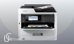 Epson WorkForce Pro WF-M5799 Driver and Software Download