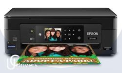 Epson XP-446 Printer Driver Download