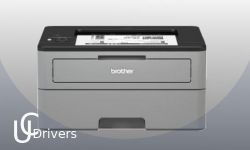 Printer Brother HL-L3290cdw Driver Download